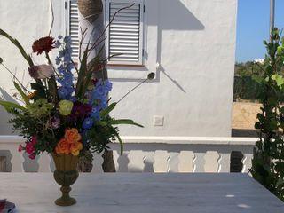 Ibiza Blooming 3