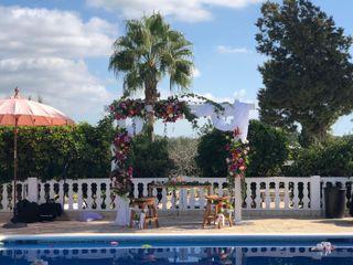 Ibiza Blooming 4