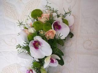 Flores Manso 5