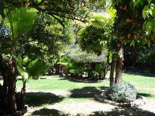 Hacienda San Miguel de Montelirio 2