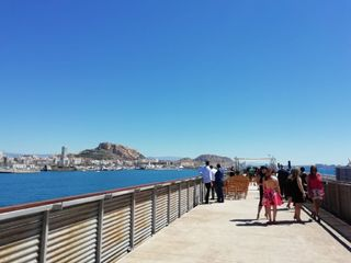 Terminal de Cruceros de Alicante 2
