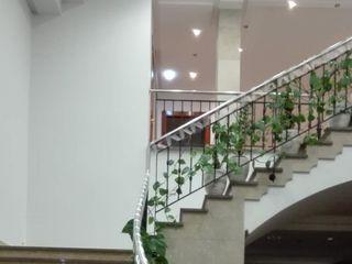 Hotel Cristina 5