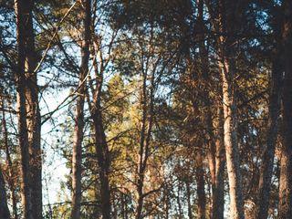 DosAnclas Photo 3