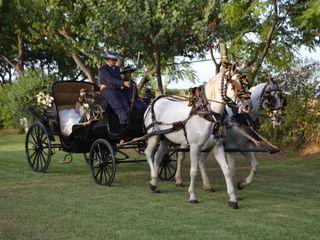Picadero Curro Jiménez - Coche de caballos 1