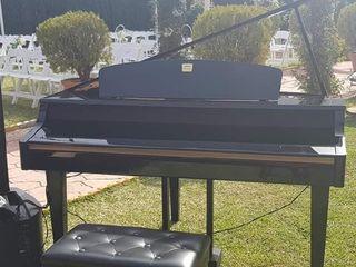 Antonio Alvarez Pianista 2