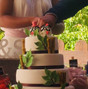 La boda de Sara y Bocaditos Dulces 4