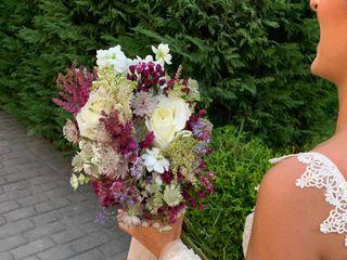 Ana Mari Floristas 3