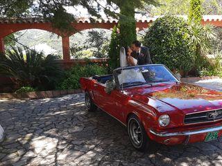 Ketty & Lord Mustang 4