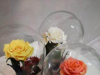 Le Fleur Eternelle 2