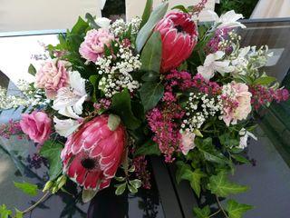 Un Patio con flores 6