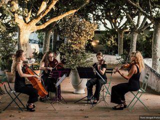 Elysian Quartet 1