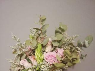 Les flors de Núria 2