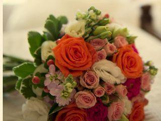 La Floris 5