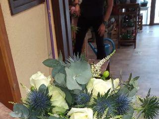 Flores Núñez 2