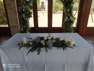 Edelweiss Floristas 3