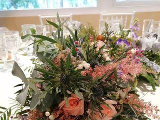 Flores y Espinas 1