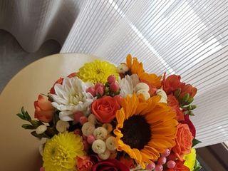Pando Floristas 3