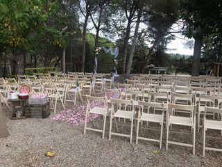 Weddings Pro 3