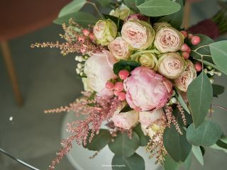 Amaranto Flors 4