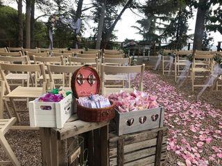 Weddings Pro 4