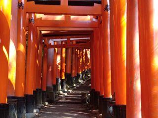 Tonsai Viajes 1