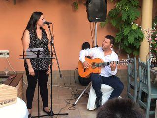 Flamenco Konfusión 1