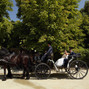Carruatges de Cavalls Monistrol 4