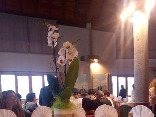 Restaurante Oianume 5