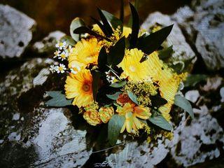 Flores Zaira 1