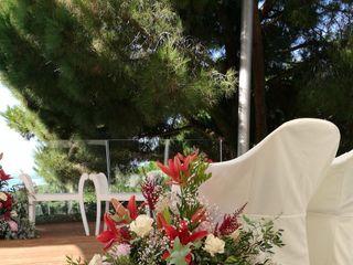 Bancells Floristes 4