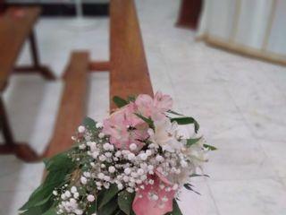 Natur Flor 4