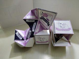 Origamoon 1