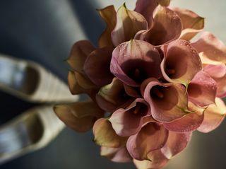 Flores Tito 2
