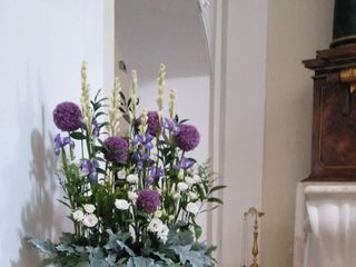 Efimer Floristas 3