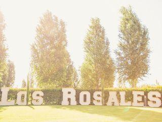 Finca Los Rosales 3