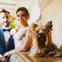 La boda de Sonia y Mirrors foto y vídeo 16