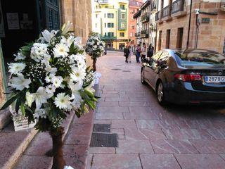 La Flor de Cervantes 4