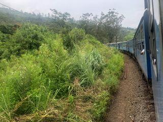 Viajes Rangali 3