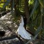 La boda de Violetta y Dither Foto & Vídeo 20