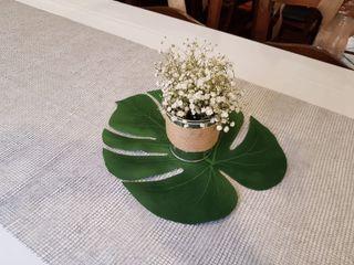 Bambú Floristas 4
