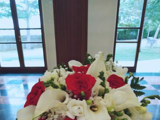 Flores Leymar 1