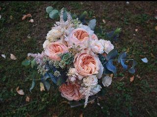 Flores Leymar 3
