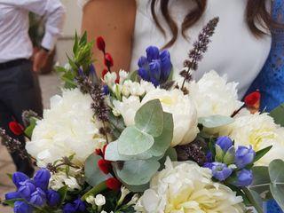 Pando Floristas 1