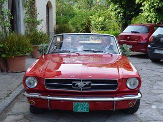 Ketty & Lord Mustang 7