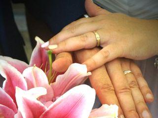 Flors i Violes 1