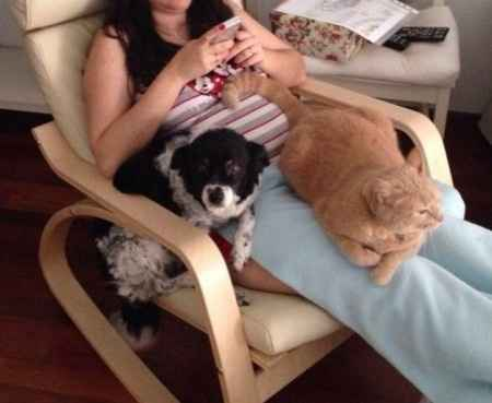 Danna,Tigger, mami y la pequeña Sofía en la tripa