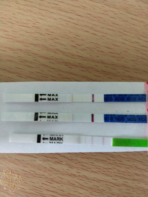 Test embarazo positivo? 1