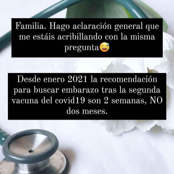 Buscadoras febrero 2021 💜👶🏻✨ - 1