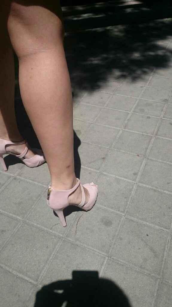 Zapato lodi goya - 2