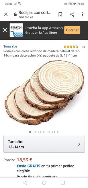 Rodajas de madera 1